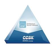 CCSP-Triangle