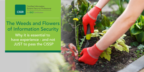 CISSP-Weeds-Flowers-Blog